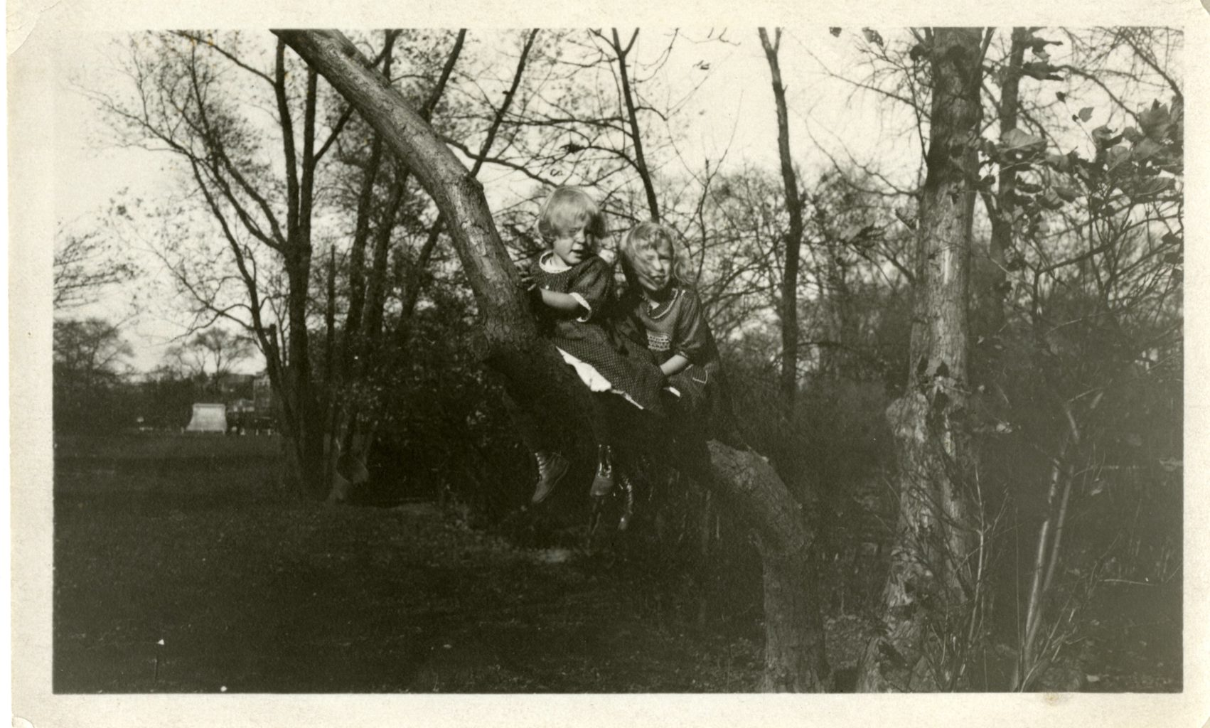 Two young girls sit on a branch of a tree.