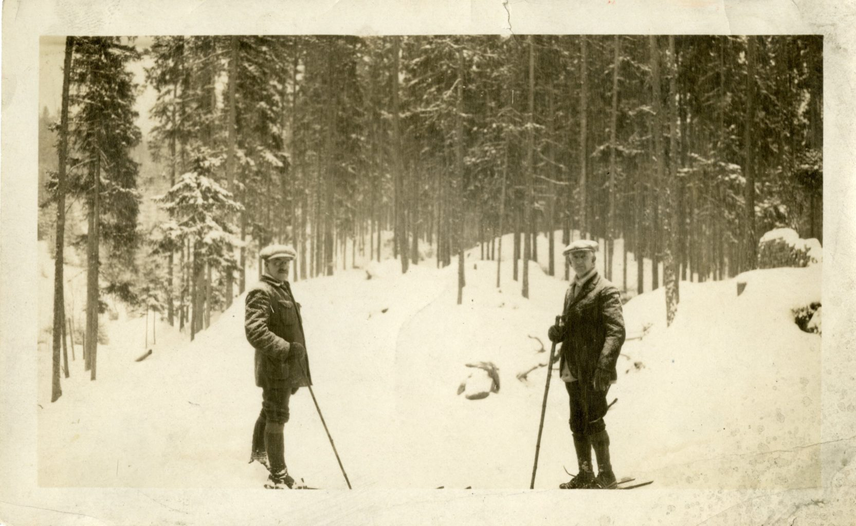Two men skiing in the snowy woods.
