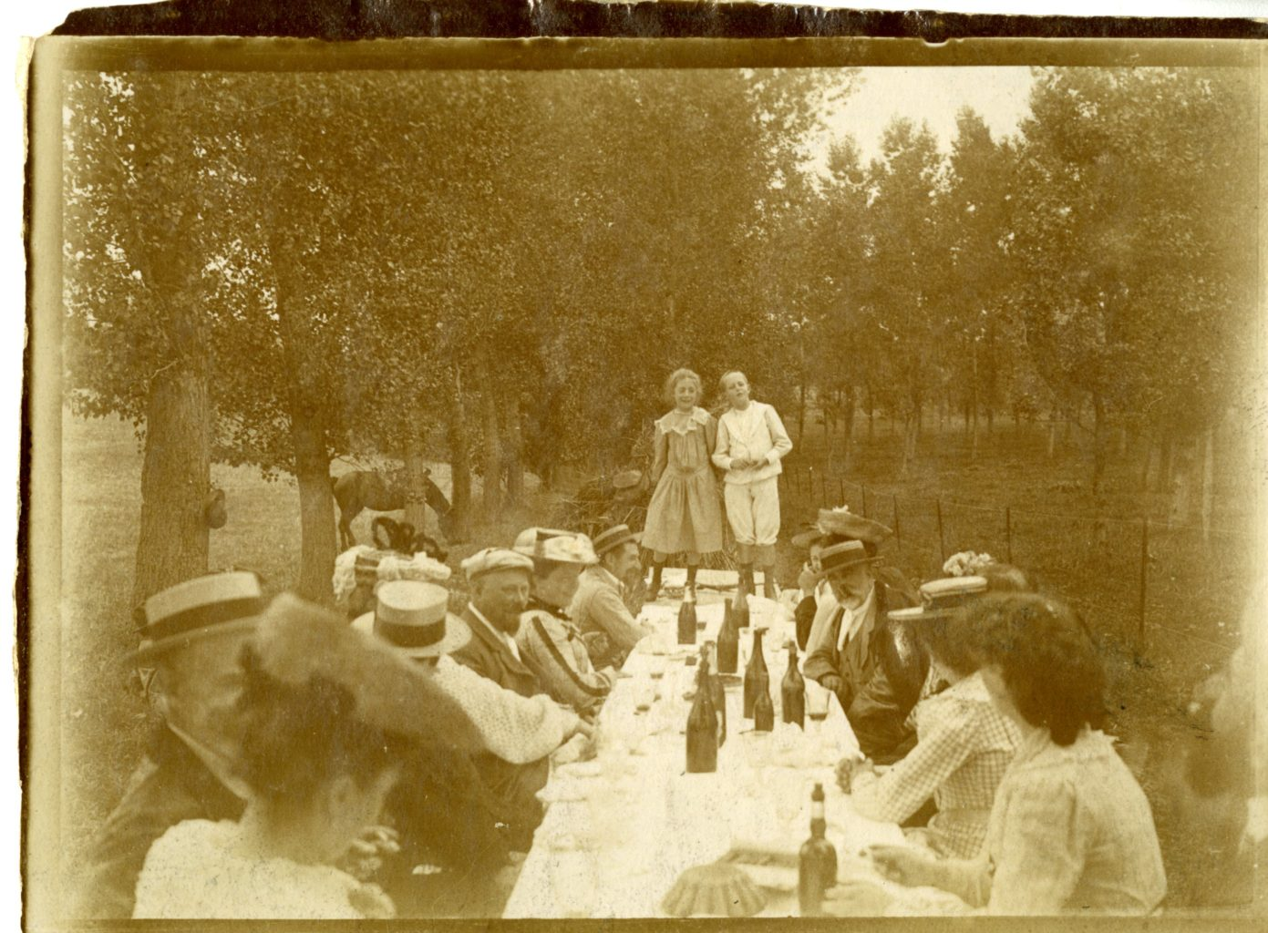 About sixteen people sit around a table outside. Two young children are standing on the end of the table, posing for the photo.