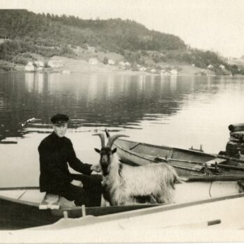 Man in a boat holds a goat. Town in the background on coast.