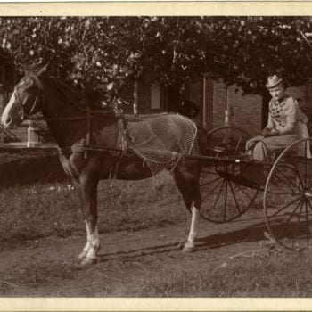 Woman on horse and buggy outside of house.