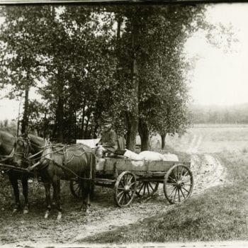 Man on horse drawn wagon, two horses.