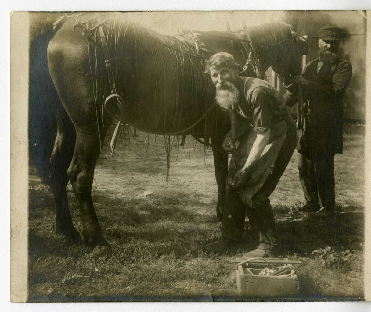 Ole and Halvor work on a horse.