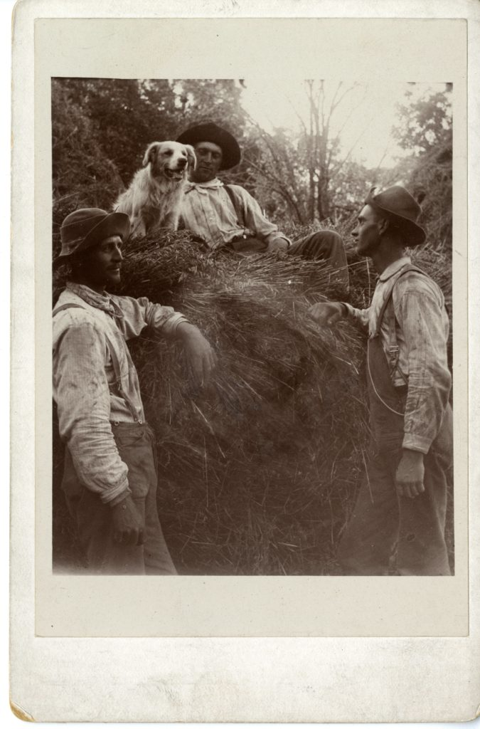 Three men and dog sit/stand on pile of hay.