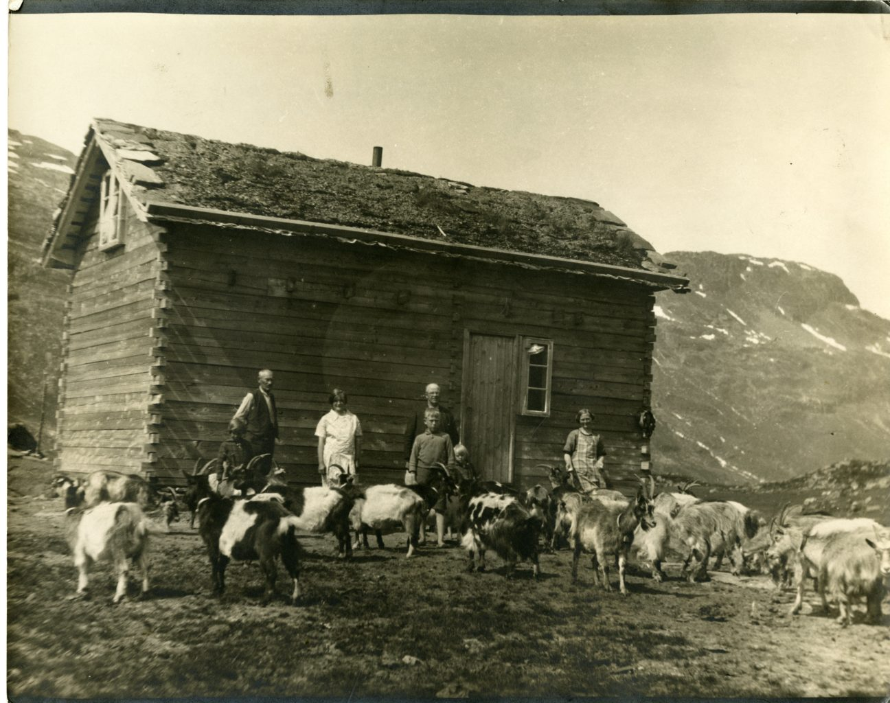 Six members of the Medhus family outside of home with goats.