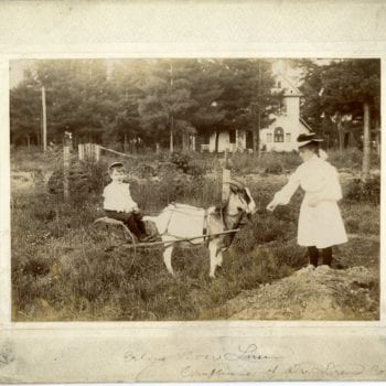 Two children, young boy riding in carriage behind goat and girl is feeding it, both are dressed nicely.
