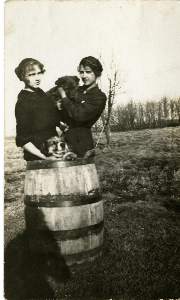 Two girls holding one dog and the other dog in a wheel barrel.